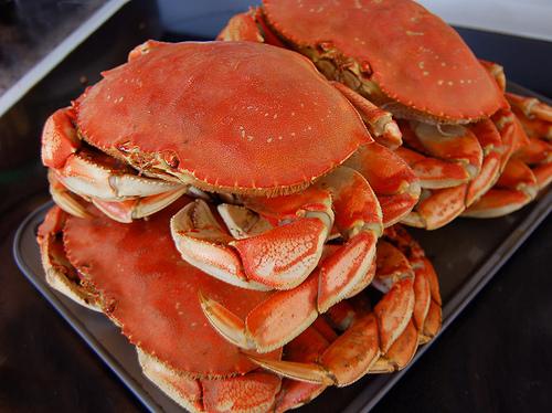 fresh caught crab!